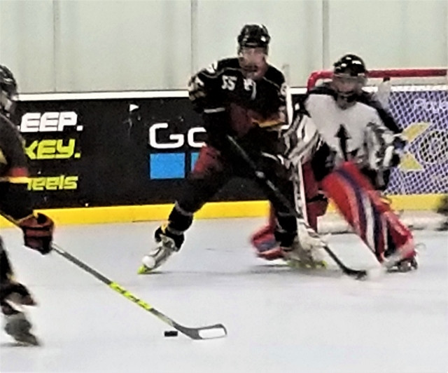 Article Western Collegiate Roller Hockey League